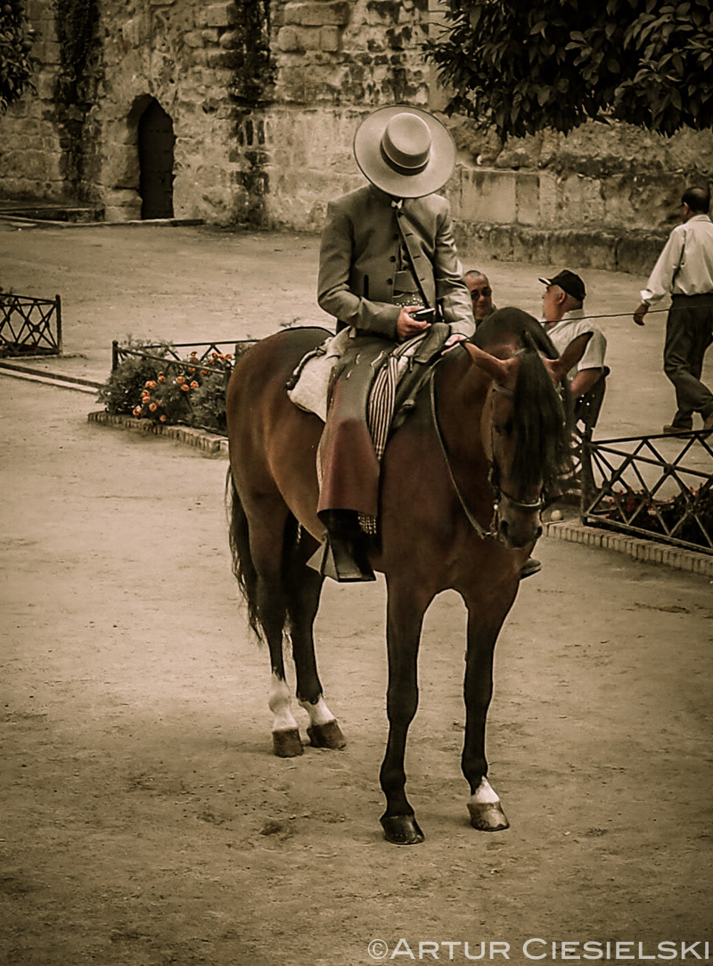 Cordoba Spain-10