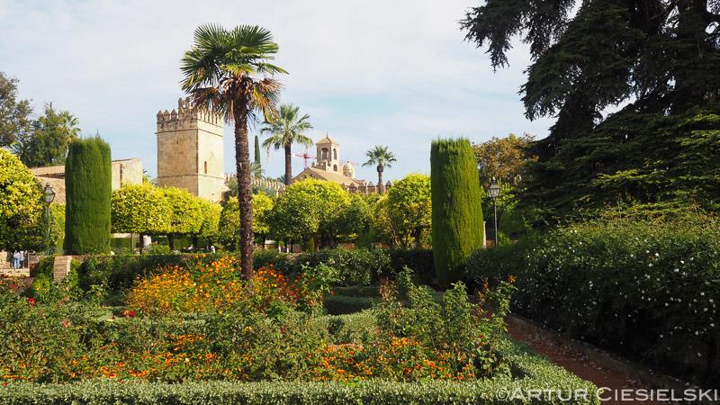 Cordoba Spain-5