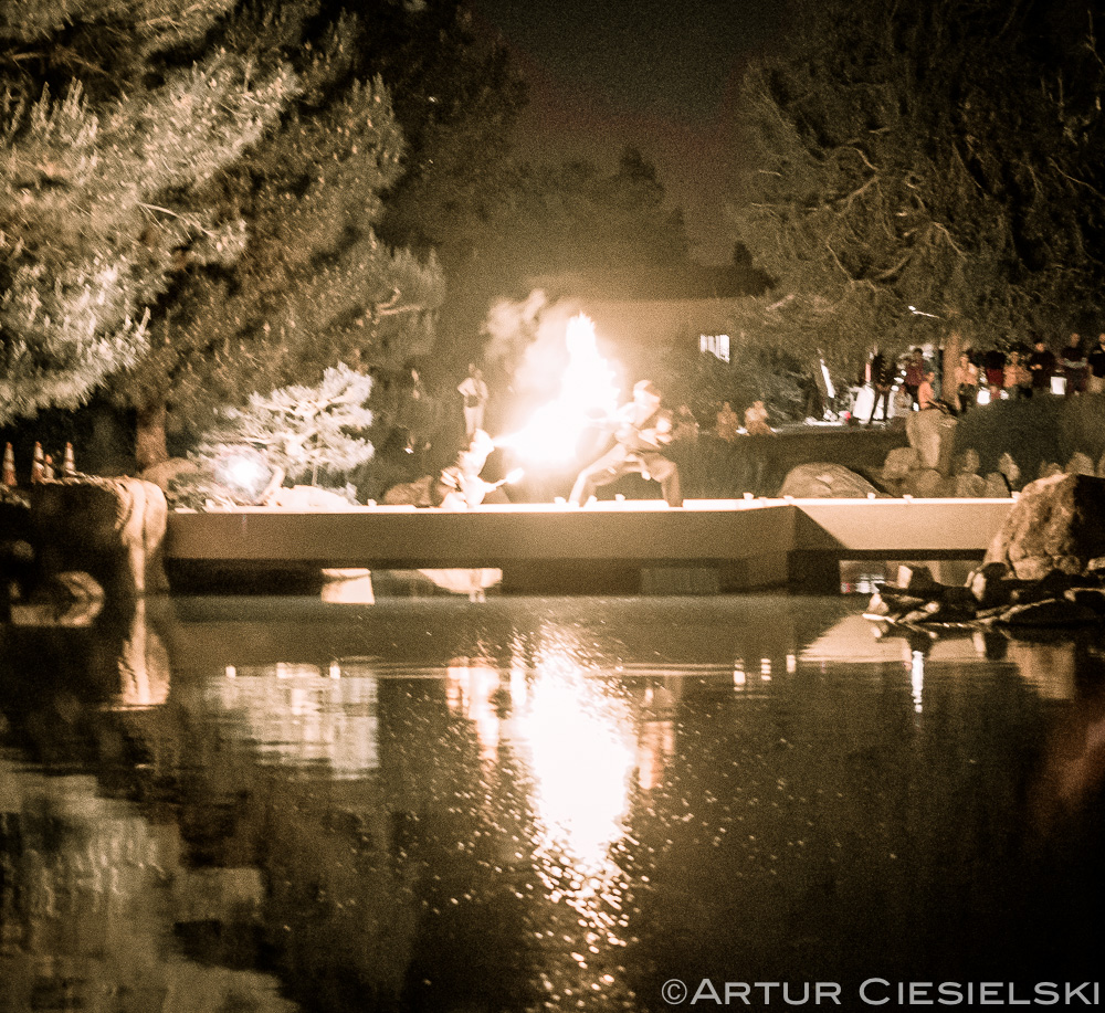 Haru In The Garden At The Japanese Friendship Garden In Phoenix |The ...
