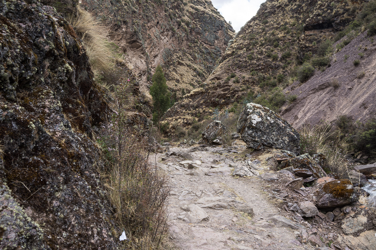 lares downhill trail-7